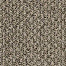 Berber new york expo carpet flooring for Best berber carpet brands